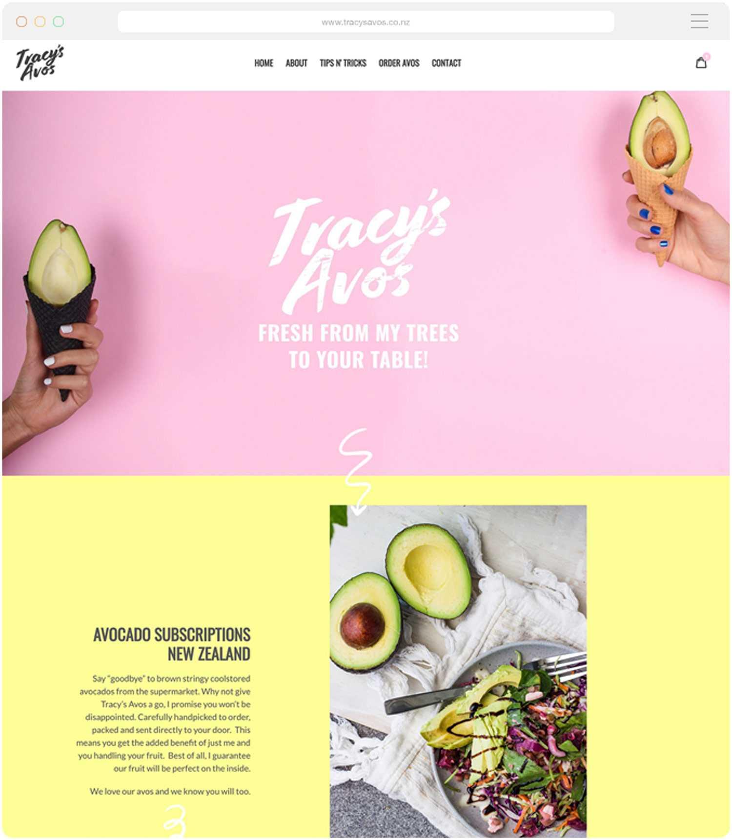 Shopify Website Company Tauranga - Tracys Avos